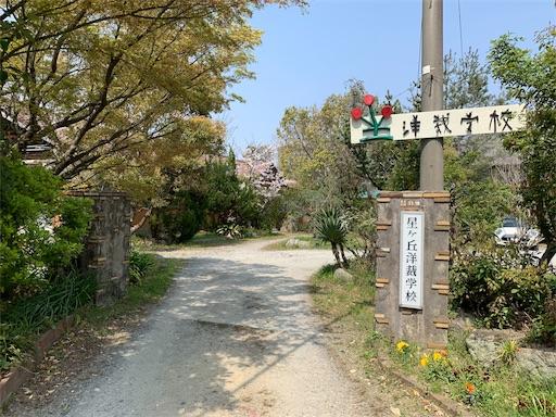 f:id:kazumi-amitie:20190409022407j:image