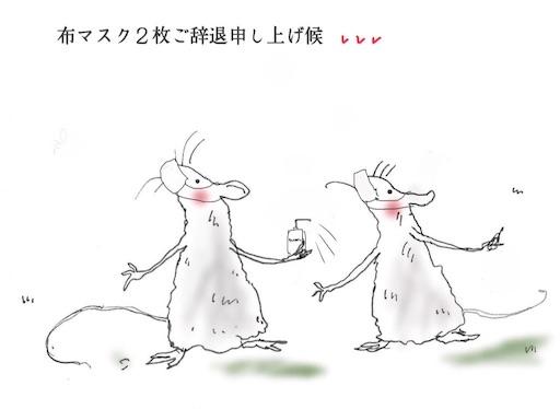 f:id:kazumi-amitie:20200402010440j:image
