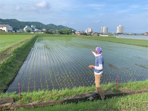 f:id:kazumi-amitie:20200529005553j:image