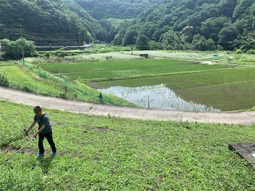 f:id:kazumi-amitie:20200621204843j:image