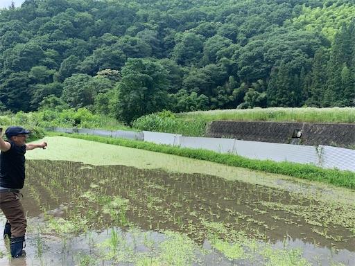 f:id:kazumi-amitie:20200621205200j:image