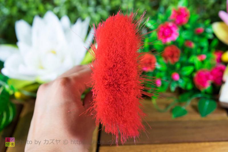 DSLRボデイブラシの毛の量