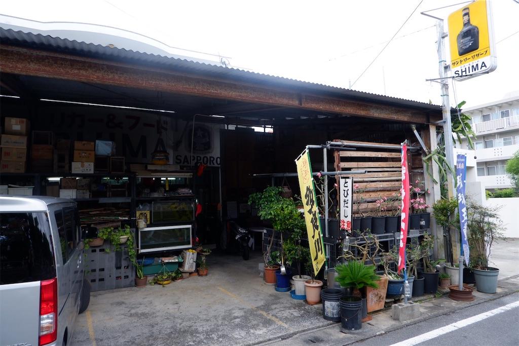 f:id:kazunobu-0915:20200331170228j:image