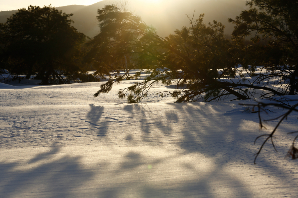 f:id:kazunori-okamura:20170624224756j:plain
