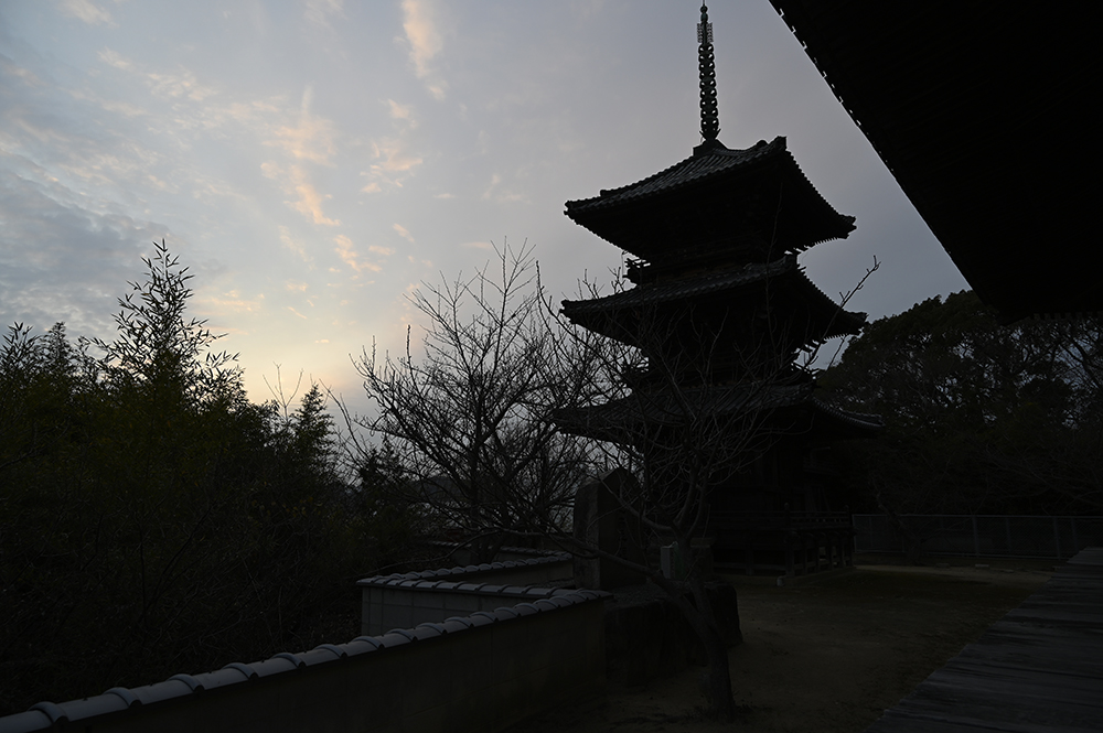 f:id:kazunori-okamura:20210105222311j:plain