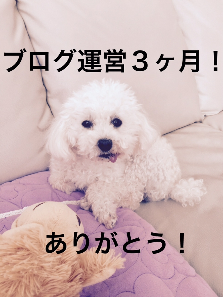 f:id:kazupi421:20161112195817j:plain