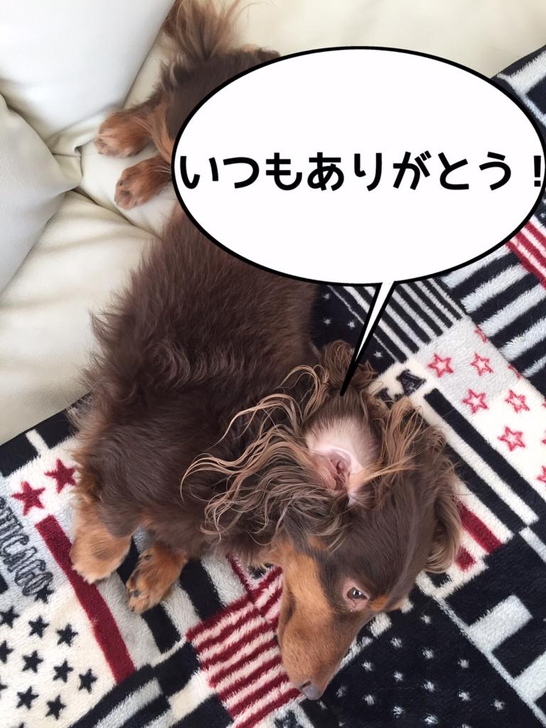 f:id:kazupi421:20161124200830j:plain