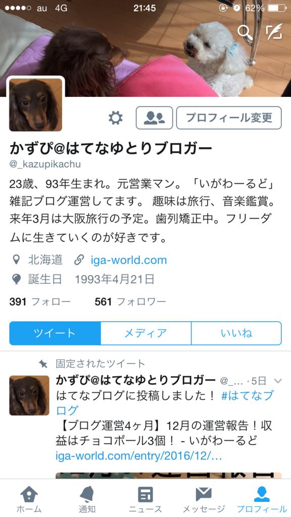 f:id:kazupi421:20161225214756p:plain