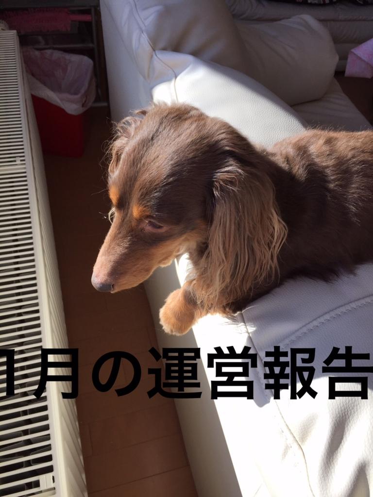 f:id:kazupi421:20170106200247j:plain