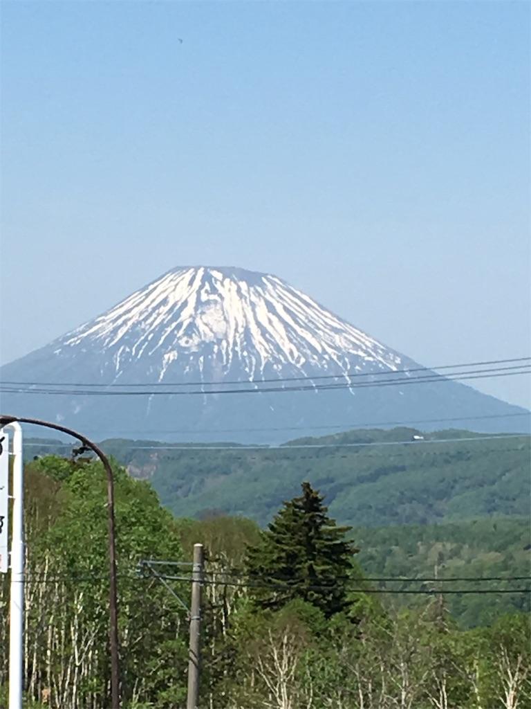 f:id:kazupu-san:20190529170448j:plain