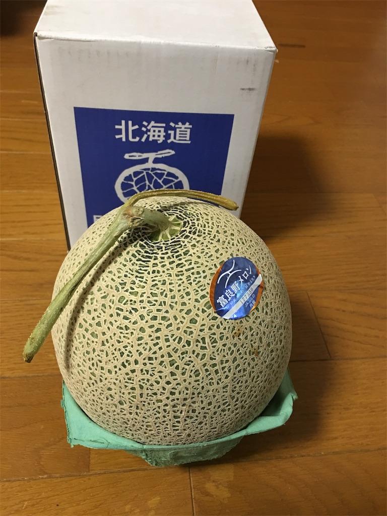f:id:kazupu-san:20190703205215j:image
