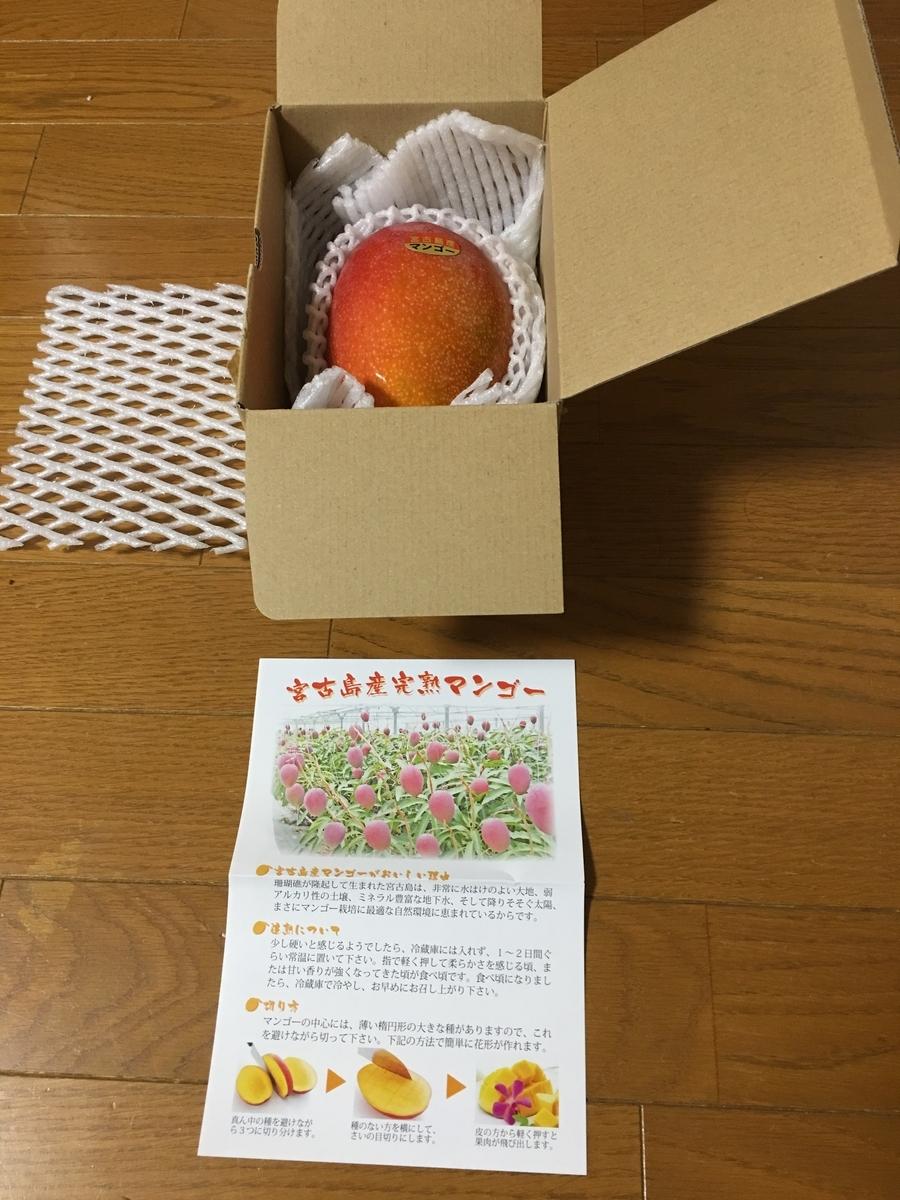 f:id:kazupu-san:20190712222533j:plain