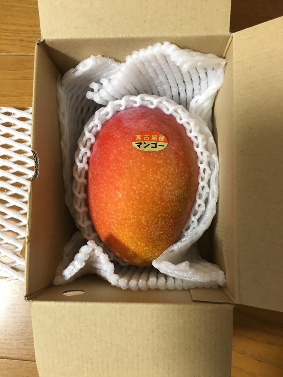 f:id:kazupu-san:20190712222613j:plain