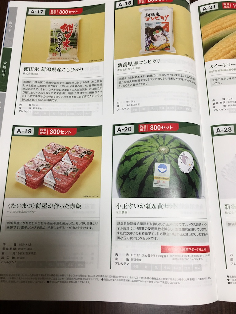 f:id:kazupu-san:20190716202108j:image