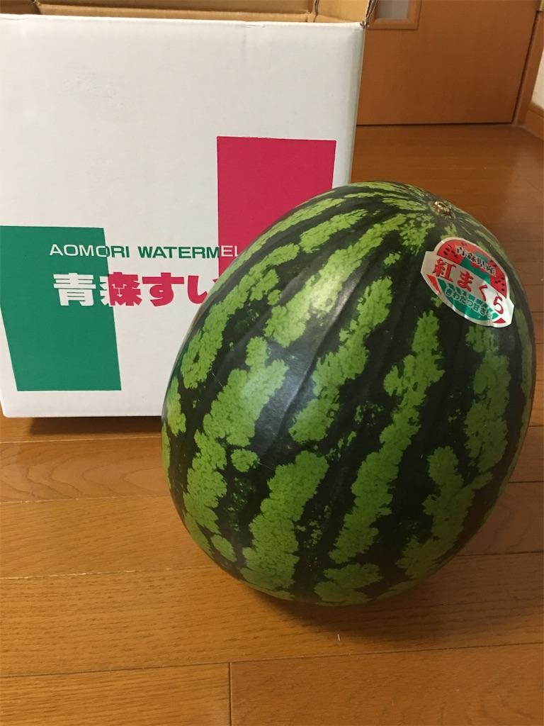 f:id:kazupu-san:20200808183639j:image