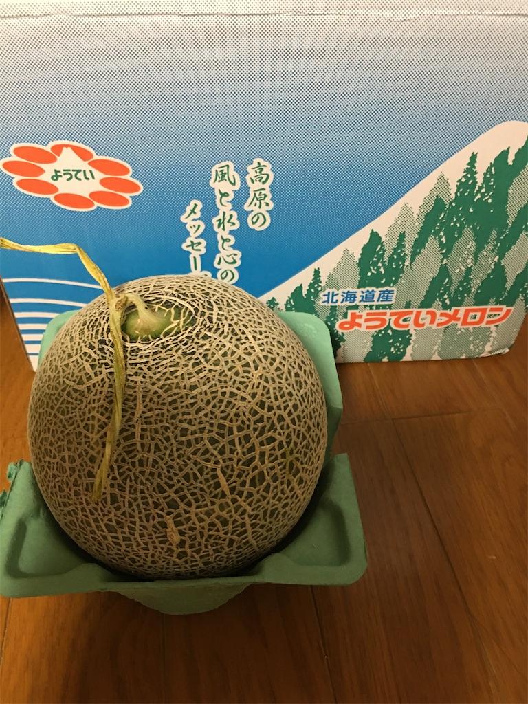 f:id:kazupu-san:20200813225106j:image