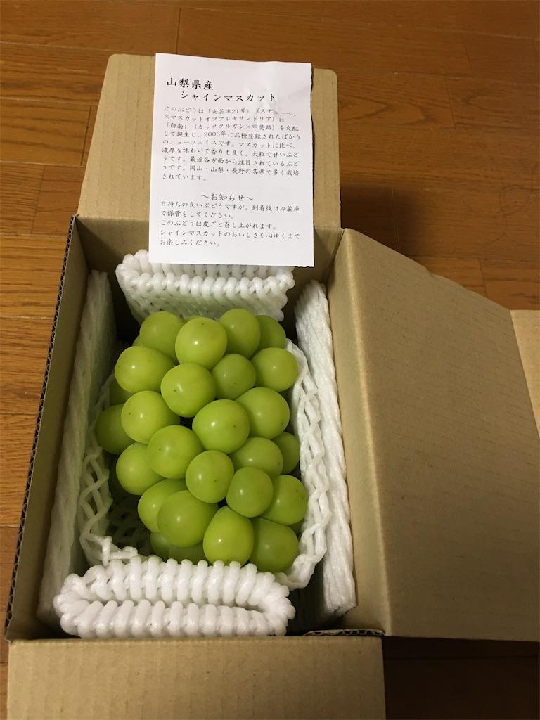 f:id:kazupu-san:20200919150618j:image