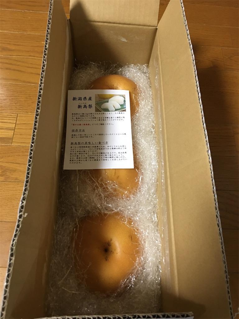 f:id:kazupu-san:20201107081747j:image