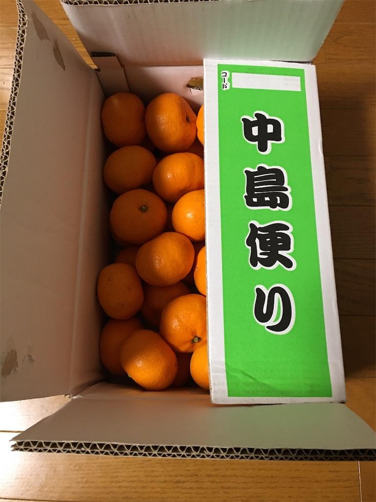 f:id:kazupu-san:20201213214938j:image