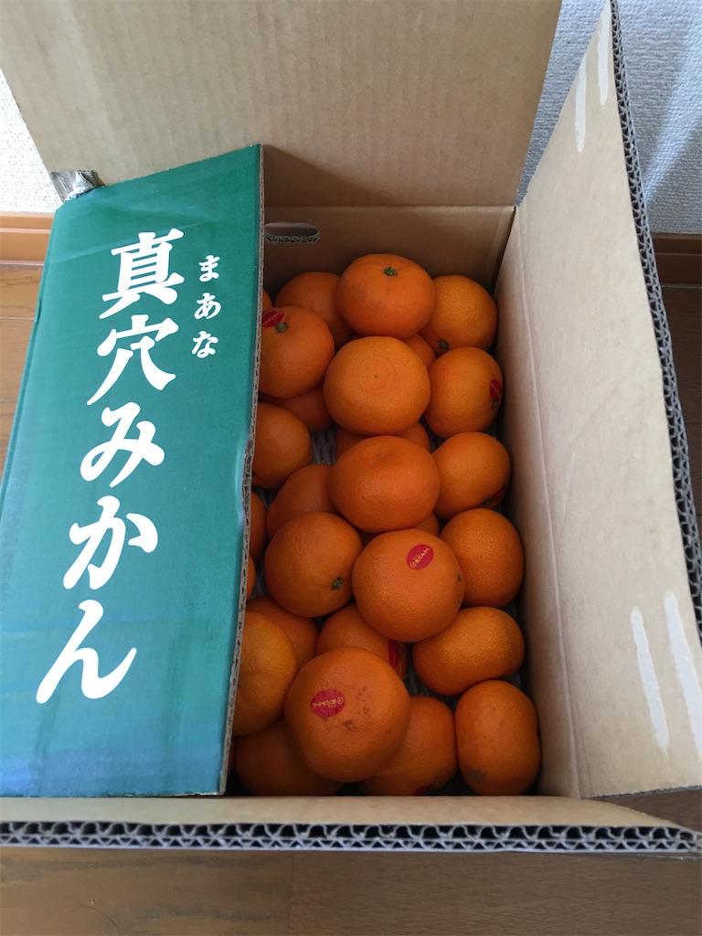 f:id:kazupu-san:20201213215132j:image