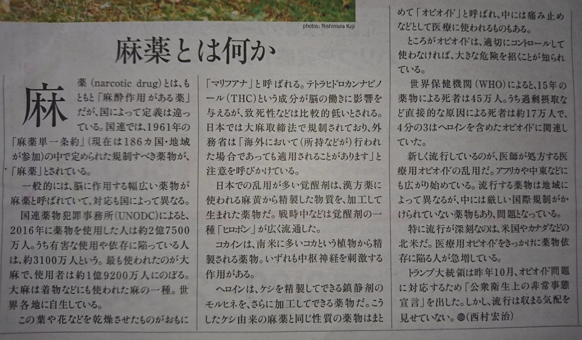 f:id:kazura-kobayashi:20200719091226j:plain