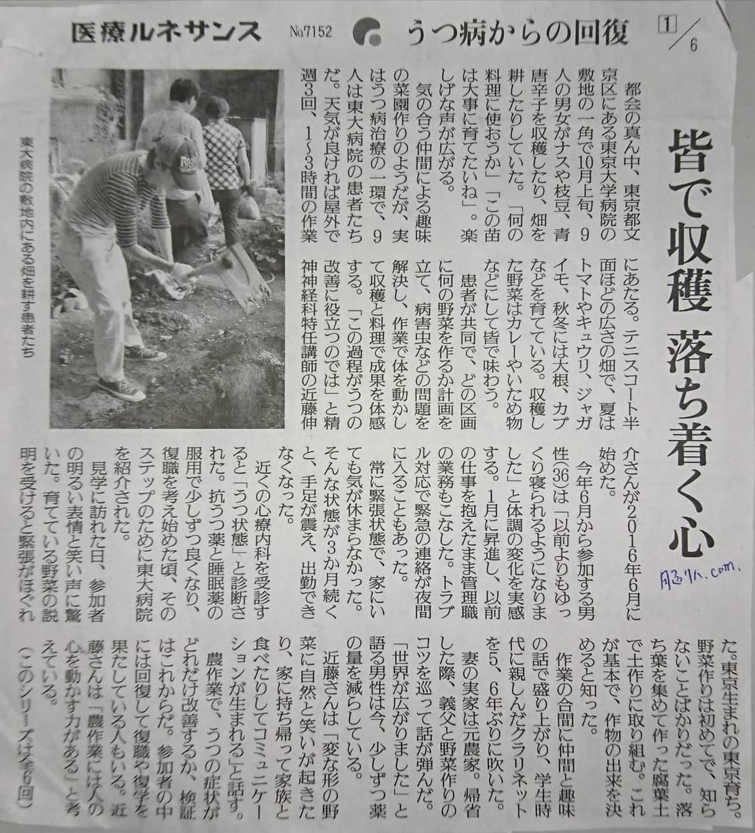f:id:kazura-kobayashi:20200730144537j:plain