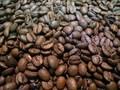 [コーヒー]ネパール