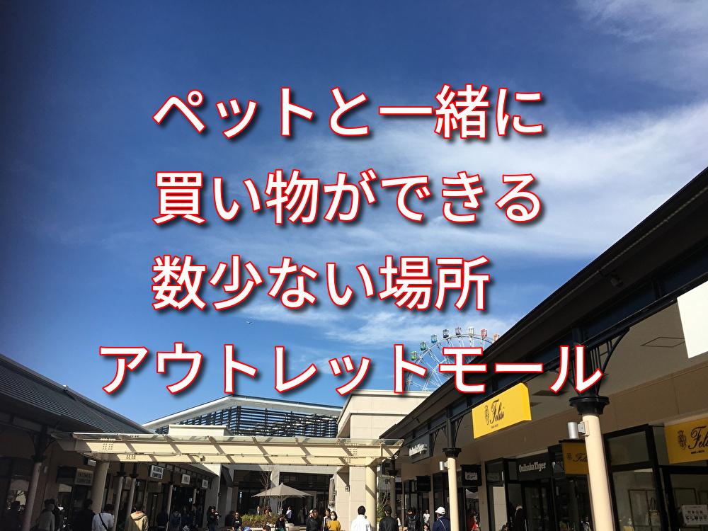 f:id:kazusa39:20191117211557j:plain