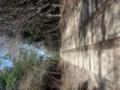 小倉山立坑 跡地