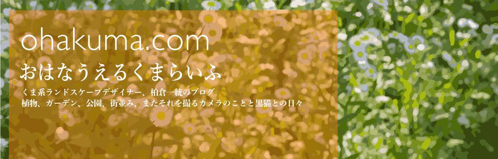f:id:kazuto47:20190807003211j:plain