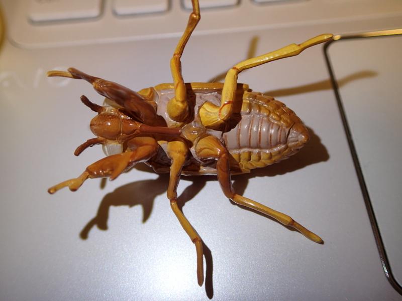 セミの幼虫(フィギュア) - 虫村の日記