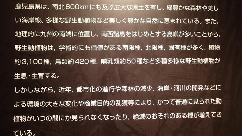 f:id:kazuyo1014:20150927063825j:image