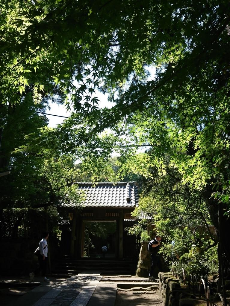 f:id:kazuyo_YM:20170625011532j:plain