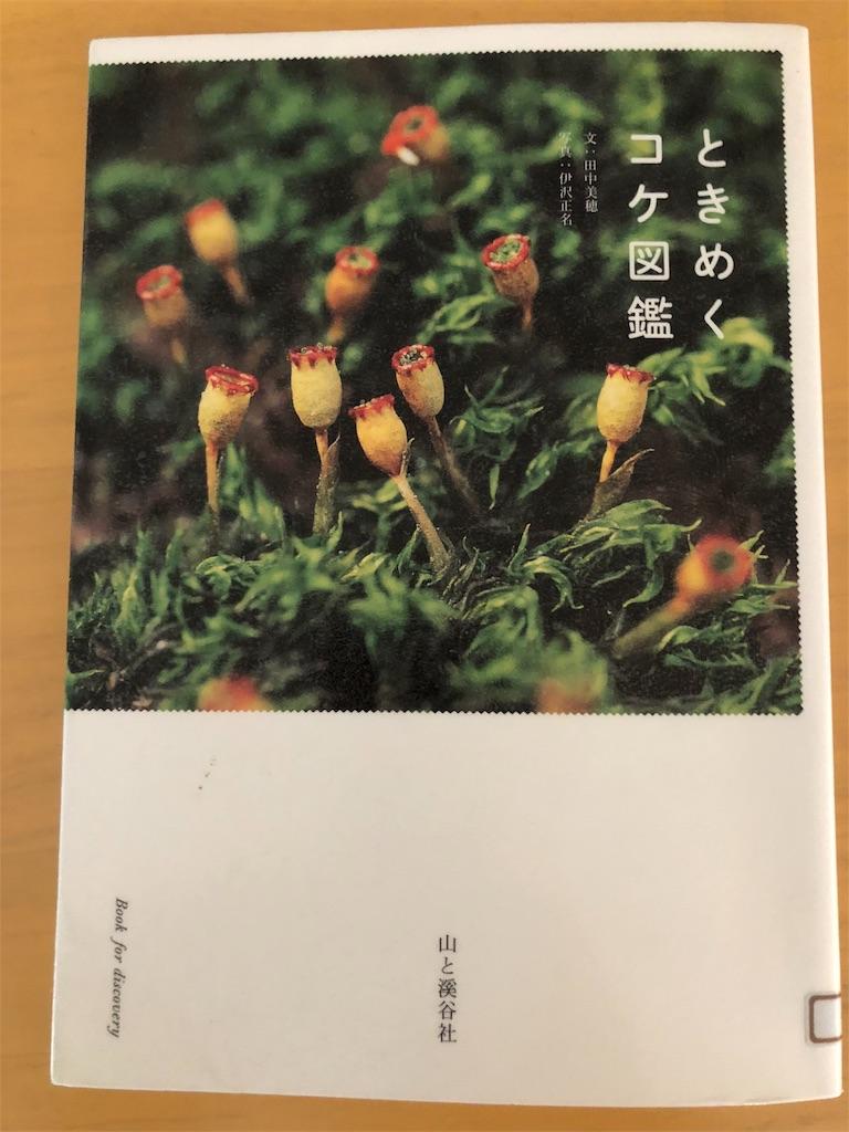 f:id:kazuyoshisan:20180626113718j:image