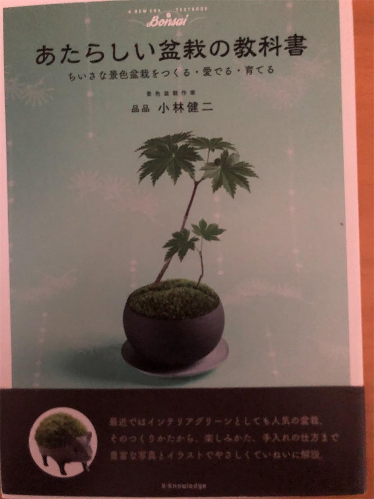 f:id:kazuyoshisan:20201222124158j:image