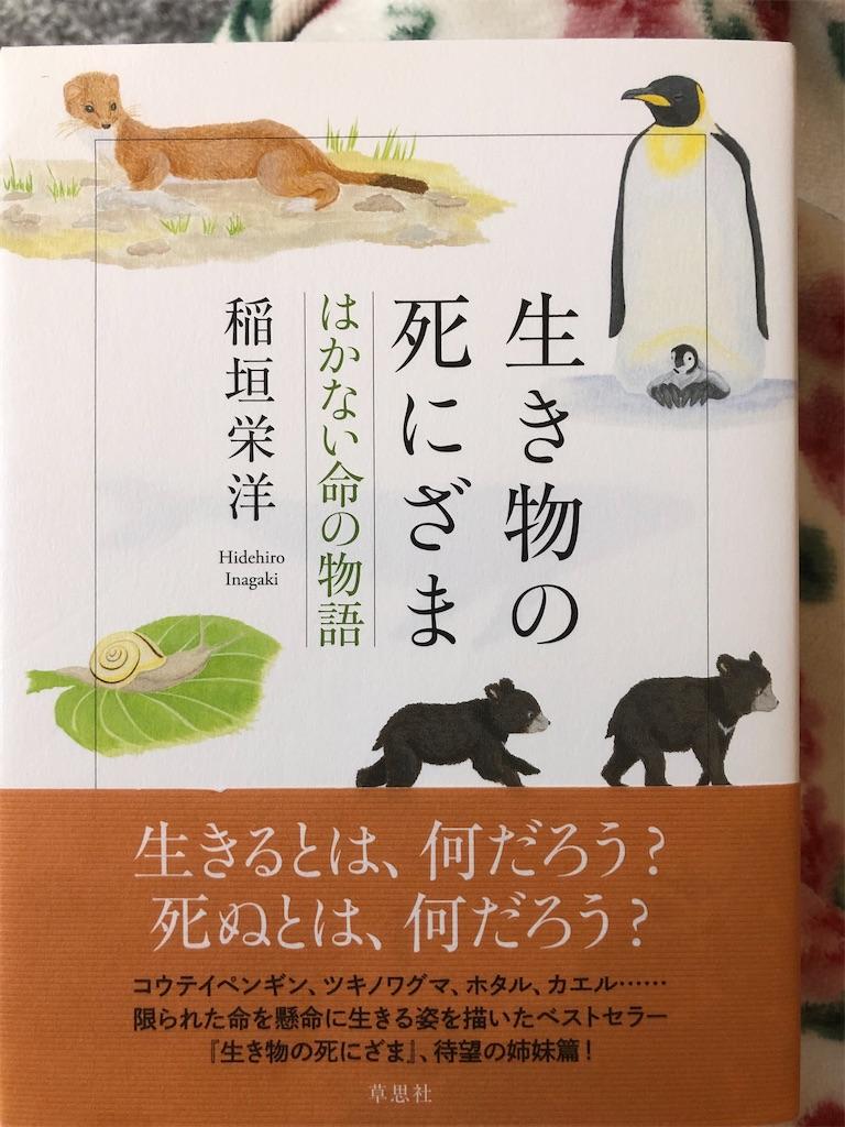f:id:kazuyoshisan:20210101091630j:image