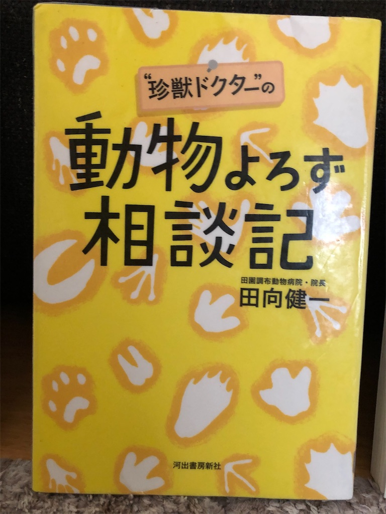f:id:kazuyoshisan:20210418222646j:image