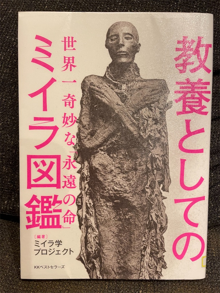 f:id:kazuyoshisan:20210909224635j:image