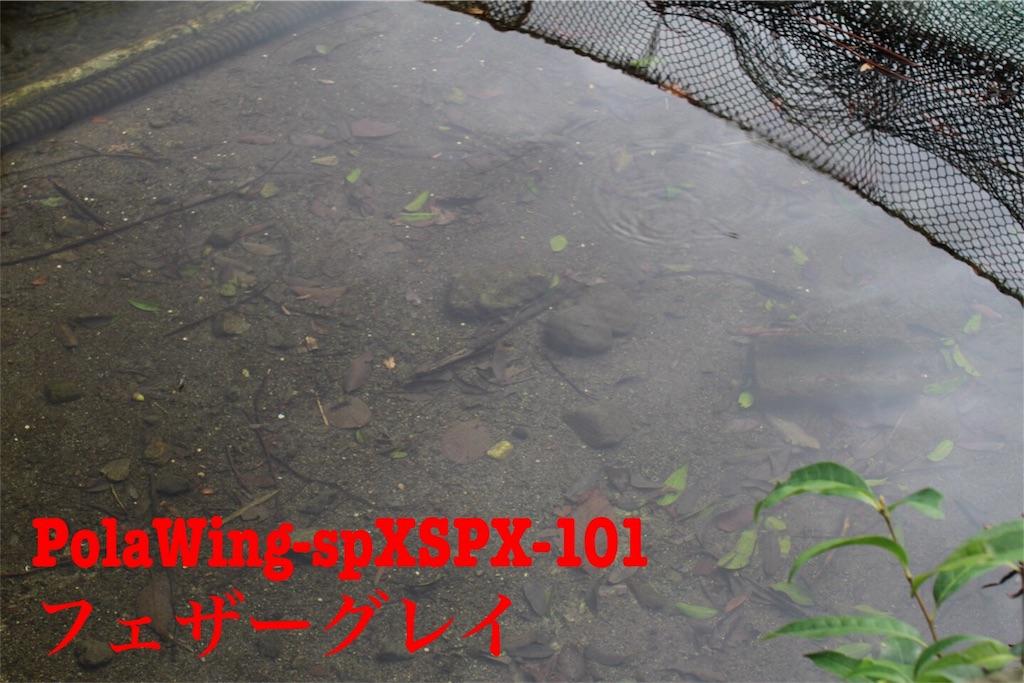 f:id:kazz-matsumura:20180922142259j:image