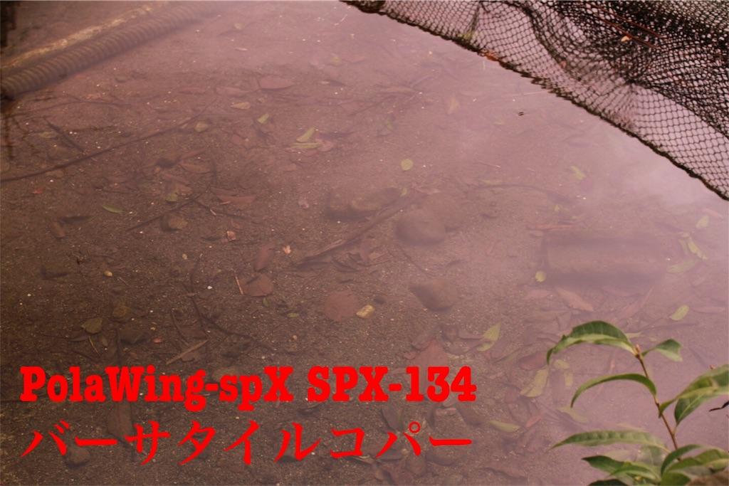 f:id:kazz-matsumura:20180922142310j:image