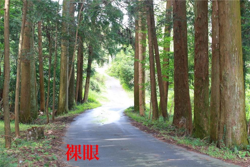f:id:kazz-matsumura:20180924224250j:image