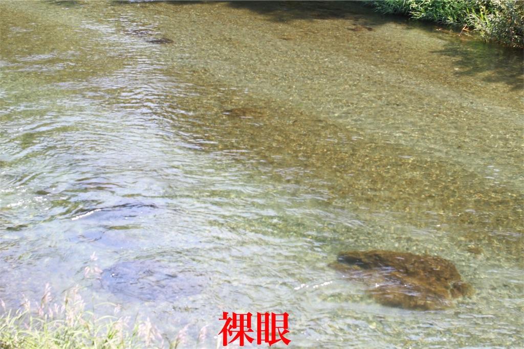 f:id:kazz-matsumura:20180924224359j:image