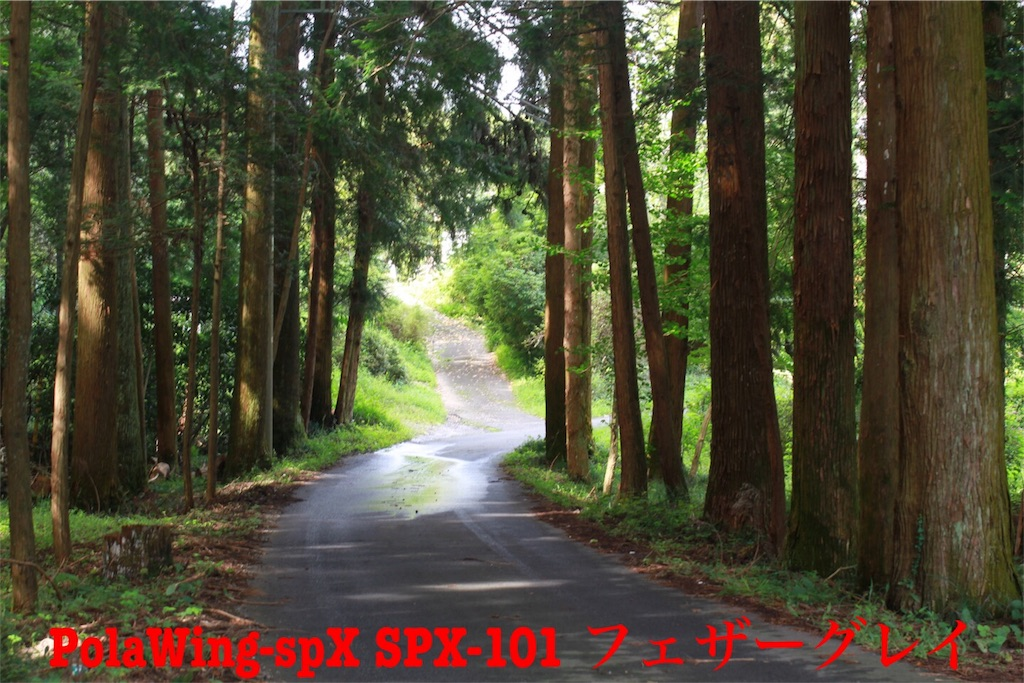 f:id:kazz-matsumura:20180924224801j:image