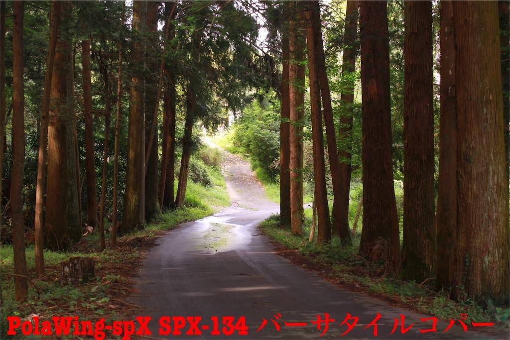 f:id:kazz-matsumura:20180924224814j:image