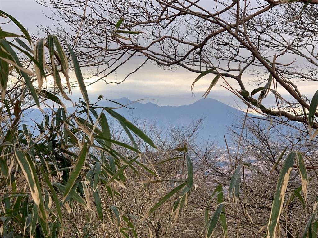 f:id:kazz-matsumura:20190209225204j:image