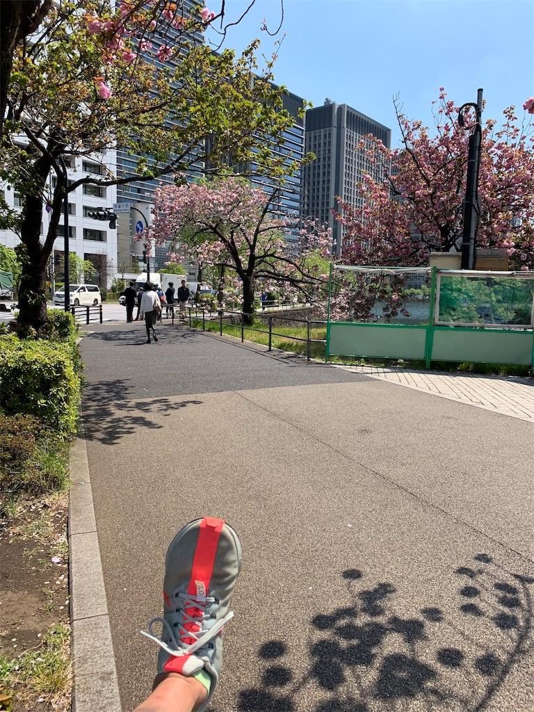 f:id:kazz-matsumura:20190419181701j:image