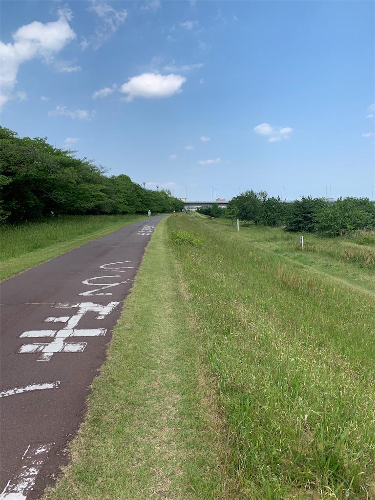 f:id:kazz-matsumura:20190517185523j:image