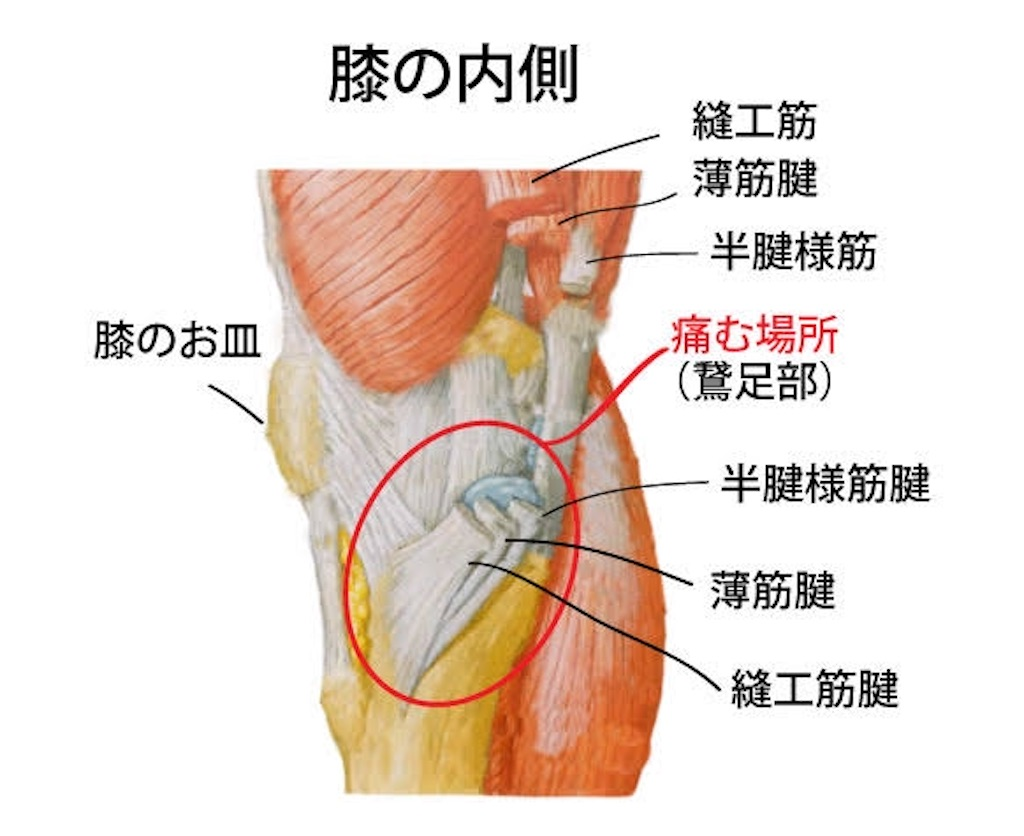 f:id:kazz-matsumura:20200331092728j:image