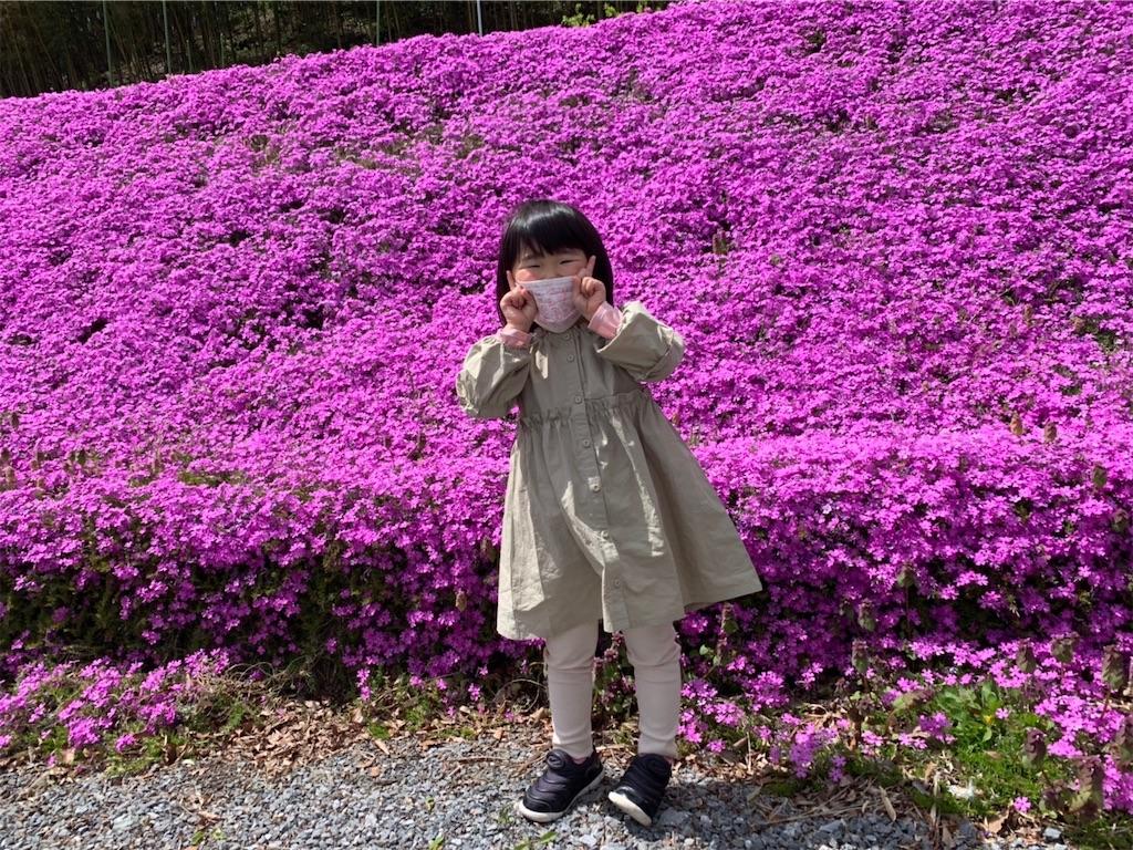 f:id:kazz-matsumura:20200430204421j:image