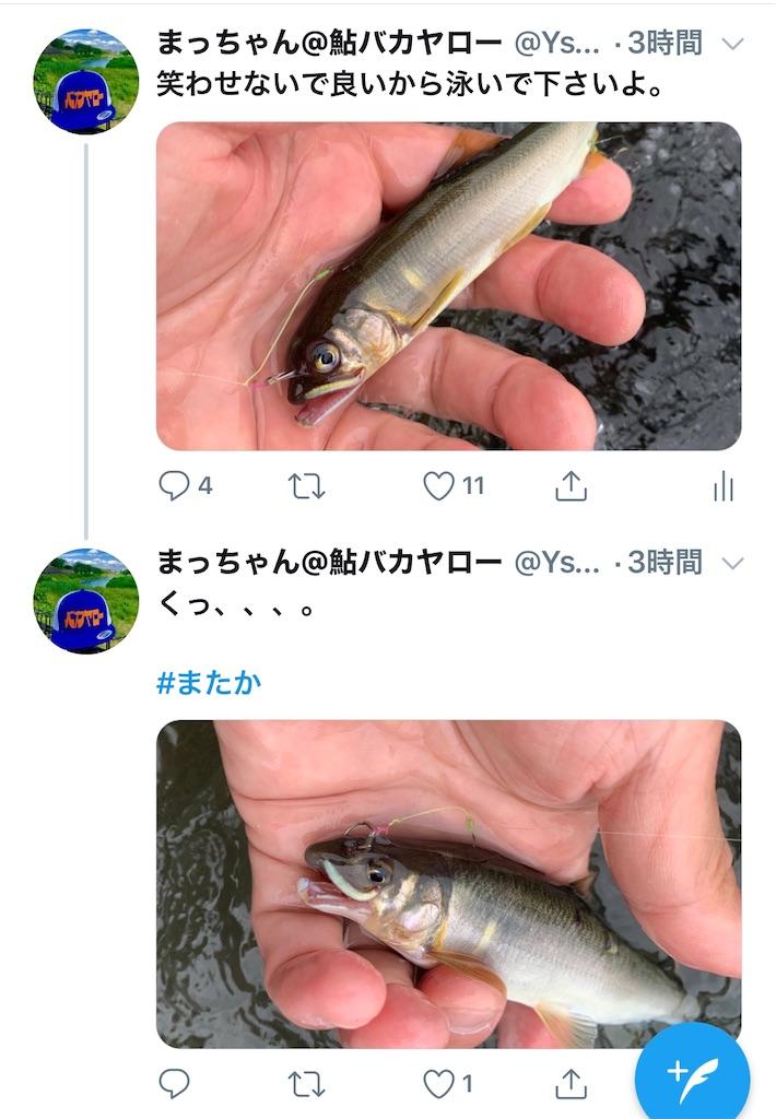 f:id:kazz-matsumura:20200624001517j:plain